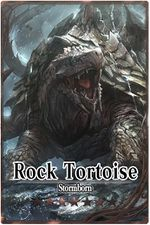 Rock Tortoise m card.jpg