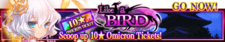 Like a Bird release banner.png