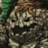 Wood Golem m icon.png