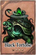 Black Tortoise m card.jpg
