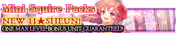 Mini Squire Packs banner.png