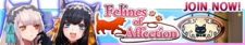 Felines of Affection release banner.png